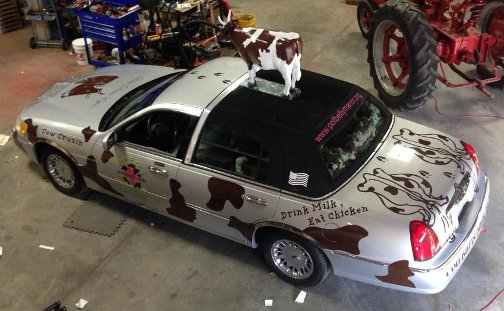 Cow car from top
